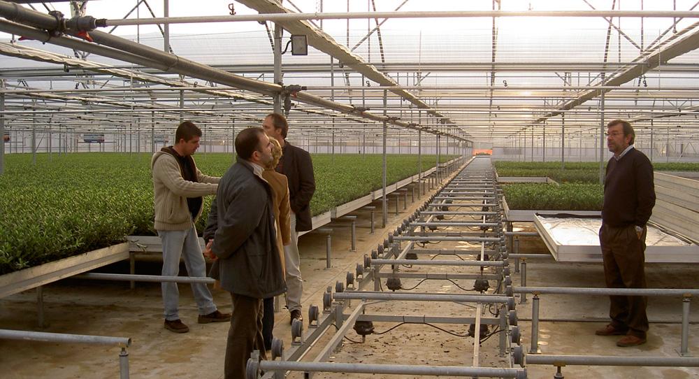 Asesoramiento en tecnificación de invernaderos