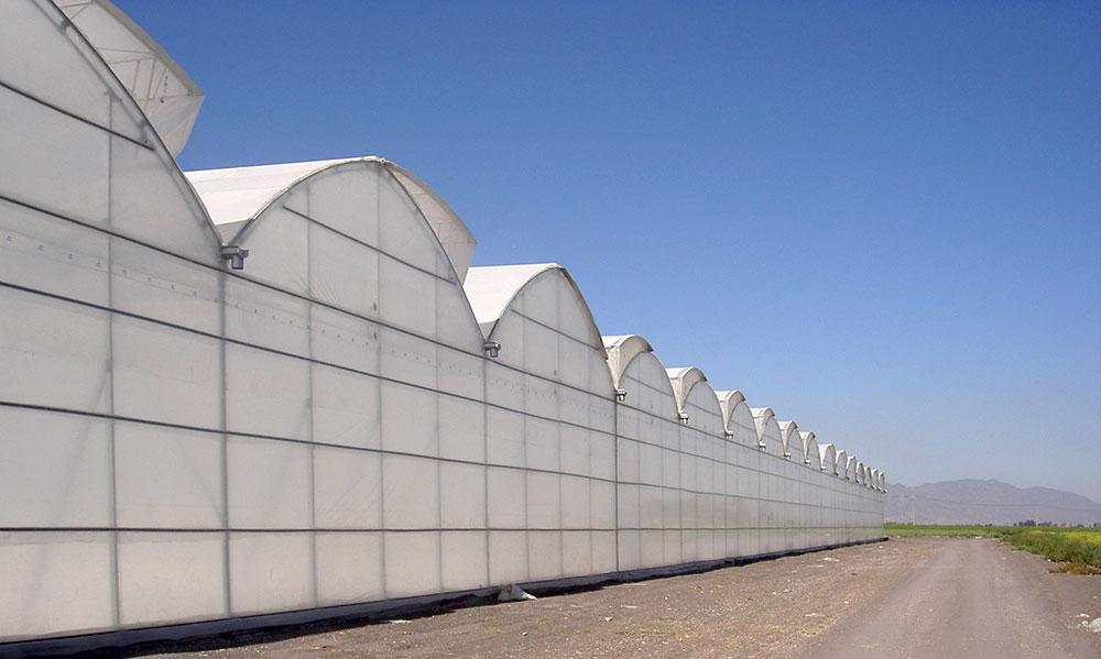 Invernadero multicapilla P-9'60 Gótico, vista exterior