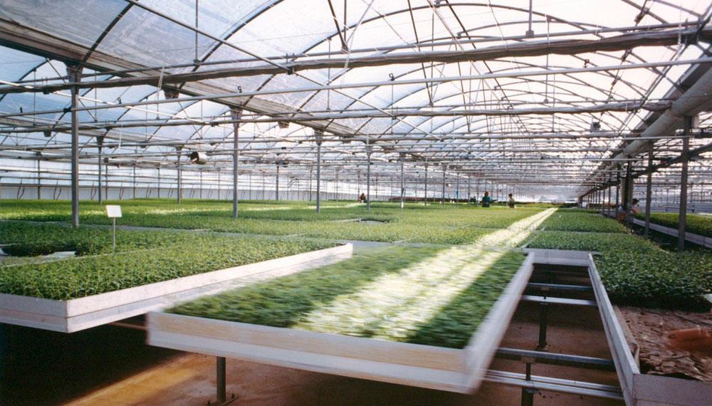 mesas de cultivo móviles