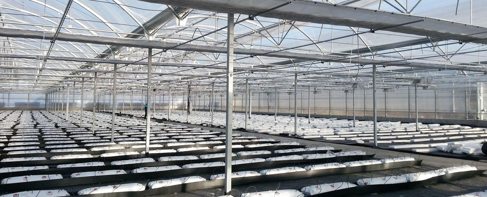 Instalaciones para cultivos hidropónicos