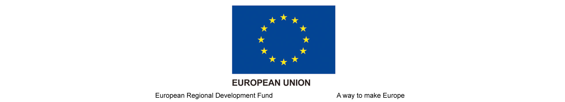 With the support of ICEX and co-financing of European FEDER Funds
