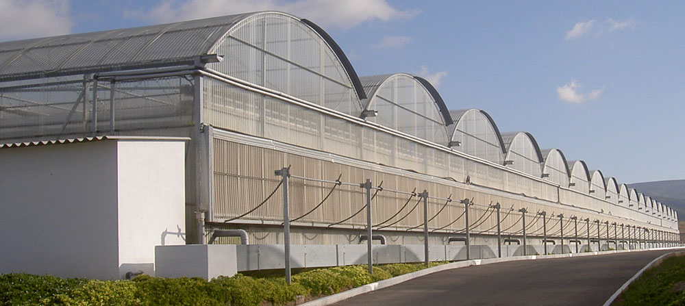 Greenhouses for ornamental plant growing